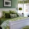 Yeşil Ev Dekorasyon Fikirleri